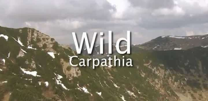 History Documentary Romania – Wild Carpathia