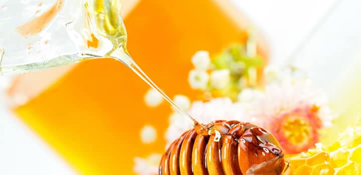 Honing volgens Wikipedia