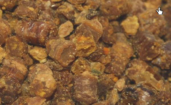 Bijenbrood Rauw - 100 Gram